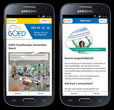 webapp laten maken voorbeeld goed fysiotherapie